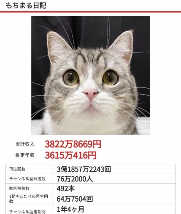 まる もち YouTube界のアイドル猫「もちまる」のフォトブック発売 人気ぶりにファンもびっくり